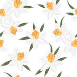 Seamless vector jonquil flower pattern background Royalty Free Stock Photography