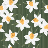 Seamless vector jonquil flower pattern background Royalty Free Stock Photo