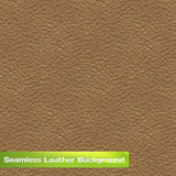 Seamless Vector Leather Texture Royalty Free Stock Image