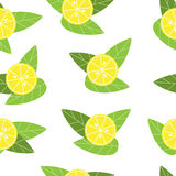 Seamless vector lemon pattern on white background Royalty Free Stock Photos