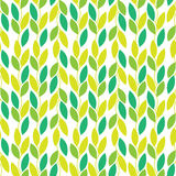 Seamless vector nature pattern with vines and leaves Stock Image