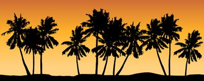 Seamless vector with palm trees and orange shaded background. Seamless vector silhouettes with palm trees and orange shaded background Stock Images