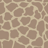 Seamless vector pattern with animal prints. Stock Photos
