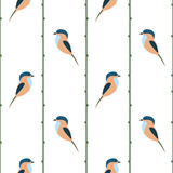 Seamless vector pattern with animals. Symmetrical background with colorful birds and branches on the white backdrop Stock Photography