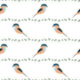 Seamless vector pattern with animals. Symmetrical background with colorful birds and branches on the white backdrop Royalty Free Stock Image