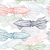 Seamless vector pattern with squid. vector illustration