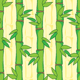 Pattern with bamboo Stock Photos