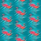 Seamless vector pattern, banner with flamingo, tropical leaves exotic flower design royalty free illustration