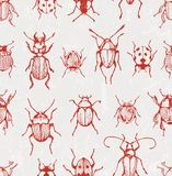 Seamless vector pattern with  beetles Stock Photography