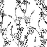 Seamless vector pattern with black and white flowers Stock Image