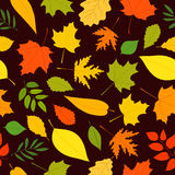 Seamless vector pattern on a brown background. Royalty Free Stock Photo