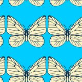 Seamless vector pattern with butterflies Royalty Free Stock Images