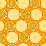 Seamless vector pattern with citrus fruits Royalty Free Stock Image