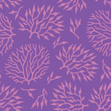 Seamless vector pattern colorful algae and plants Royalty Free Stock Image