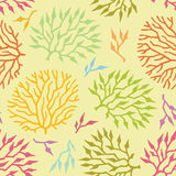 Seamless vector pattern colorful algae and plants Stock Photo