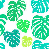Seamless vector pattern of colorful leaves Monstera. Exotic tropical repeat ornament. Royalty Free Stock Photography
