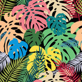 Seamless vector pattern of colorful leaves monstera and palm. Exotic tropical repeat ornament Royalty Free Stock Photography