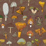 Seamless vector pattern of different mushrooms. Stock Photos