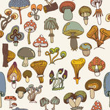 Seamless vector pattern of different mushrooms. Royalty Free Stock Images