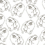 Seamless vector pattern with dogs. Stock Photography