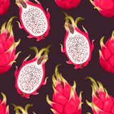 Seamless vector pattern with dragon fruit. On a dark background Royalty Free Stock Image