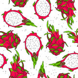 Seamless vector pattern of dragon fruit Stock Images