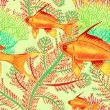 Seamless vector pattern with fish and corals. Vector illustration with exotic fish and corals. Seamless background. Vintage pattern. Hand drawing realistic Stock Photo