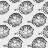 Fish hedgehog seamless pattern. Black and white. Seamless vector pattern with fish hedgehog under water. Sea bottom and animals. Vintage engraving art. Hand royalty free illustration