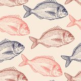 Seamless vector pattern with fish. Seamless vector pattern with animals under water. Colored fish on pastel background. Vintage engraving art. Black and Pink Royalty Free Stock Photography