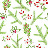 Seamless vector pattern with floral branches winter christmas ha Stock Image