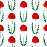 Seamless vector pattern with flowers. Bright symmetrical background with closeup poppies with leaves on the white backdrop Royalty Free Stock Image
