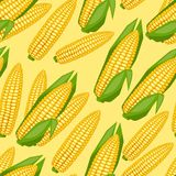 Seamless vector pattern with fresh ripe corn cobs Royalty Free Stock Photo