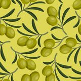 Seamless vector pattern with fresh ripe olive Royalty Free Stock Images