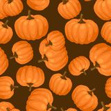 Seamless vector pattern with fresh ripe pumpkins Royalty Free Stock Images