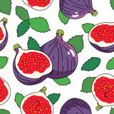 Seamless vector pattern of the fruits of a fig. On a white background Royalty Free Stock Photos