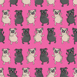Seamless vector pattern with funny dogs. Stock Photos