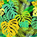 Seamless vector pattern of greenery leaves monstera and palm. Exotic tropical repeat ornament Royalty Free Stock Photo