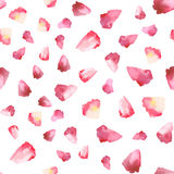 Seamless vector pattern with hand drawing watercolor flower petals Royalty Free Stock Image
