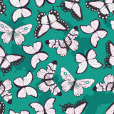Seamless vector pattern with hand drawn colorful butterflies, green background Stock Photos