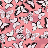 Seamless vector pattern with hand drawn colorful butterflies, pink background Stock Photography