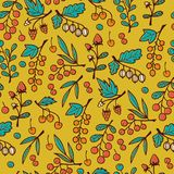 Seamless Pattern with Berries on Branches. Stock Images