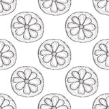 Seamless vector pattern with hand drawn fruits. Background with piece of citrus. Stock Images