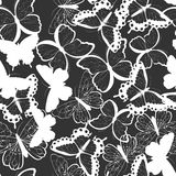 Seamless vector pattern with hand drawn silhouette butterflies, black and white Stock Image