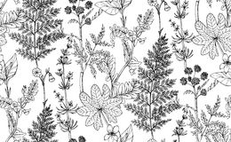 Seamless vector pattern of herbs and flowers Stock Image