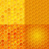 Seamless vector pattern with honey cells, combs Stock Images