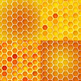 Seamless vector pattern with honey cells, combs Royalty Free Stock Image