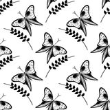 Seamless vector pattern with insects, black and white background with butterflies and branches with leaves Royalty Free Stock Images