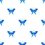 Seamless vector pattern with insects, symmetrical  background with blue butterflies on the white backdrop Stock Images