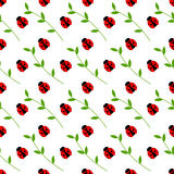 Seamless vector pattern with insects, symmetrical background with bright little ladybugs and branches with leaves, on the white ba Royalty Free Stock Photos