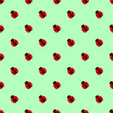Seamless vector pattern with insects, symmetrical background with bright little ladybugs, over green backdrop Royalty Free Stock Photo